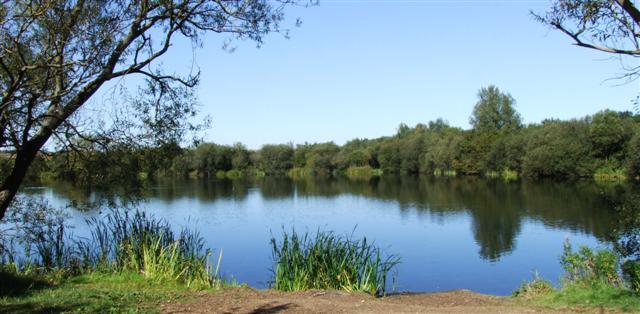 carp lake jewish dating site Carp fishing simulator is a 3d fishing experience it's the most authentic fishing experience on mobilefish from any of the pegs on 5 lakes with up to 3 rods set up your bivvy, use your.